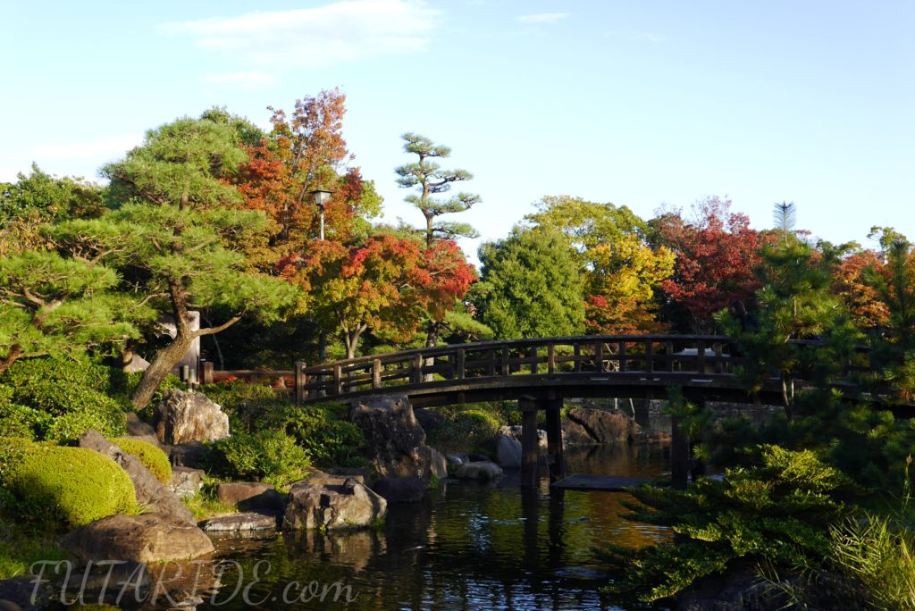 白鳥庭園 紅葉