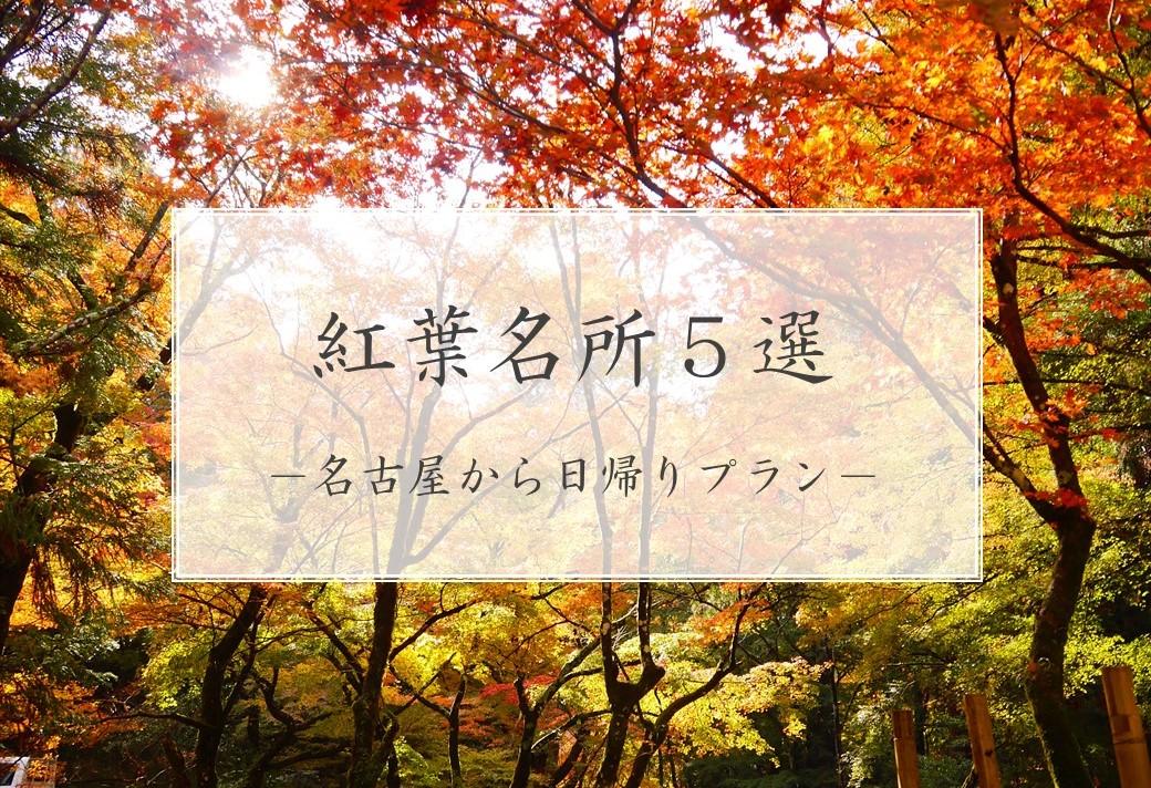 【紅葉】名古屋から車で1時間以内!実際に行って良かった東海の紅葉名所5選【東海】